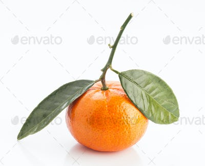 tangerines with leaves on white background
