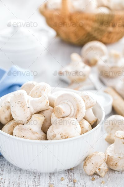 Fresh champimgon mushrooms, raw fungi