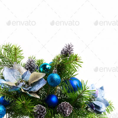 Christmas background with silk poinsettias isolated on white, co