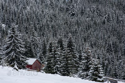 Snow covered mountain wooden hut