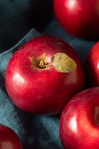Red Organic Macintosh Apples