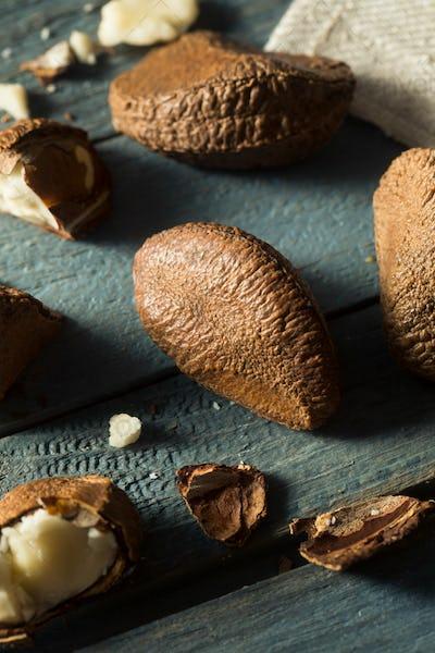 Raw Brown Organic Shelled Brazil Nuts