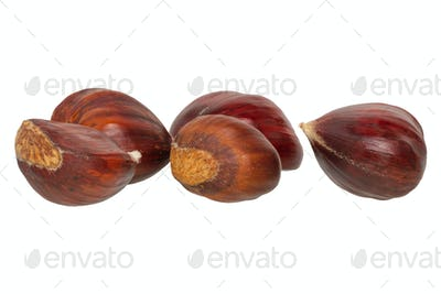 Edible chestnuts on a white background