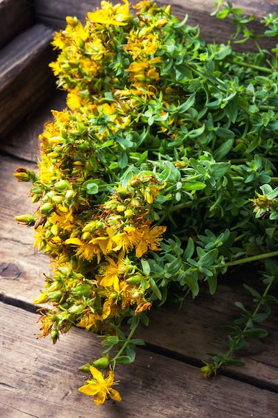 bouquet blooming medicinal herb