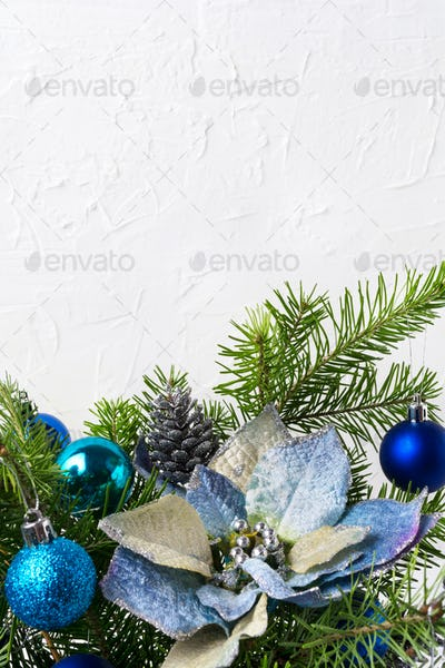 Christmas background with silver beads, blue silk poinsettias, c