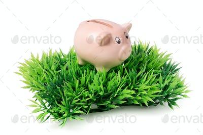 Small pink piggy bank on green plastic grass