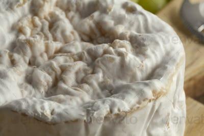 Small camembert cheese close up