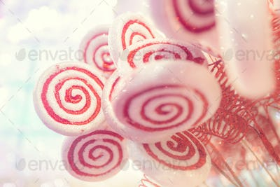 White and red candy