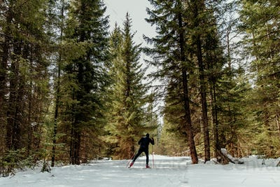 back male skier athlete
