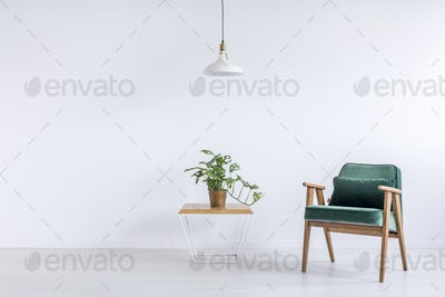 Room with green vintage armchair