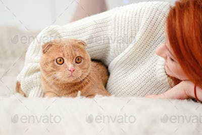 Beautiful young woman with red cat. Domestic cat Scottish Fold c