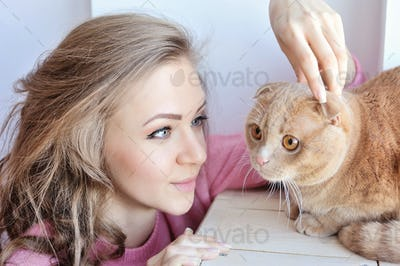 Beautiful young woman with domestic cat Scottish Fold