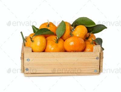 Wooden box with fresh mandarins