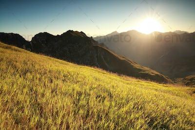 morning sunshine over high alpine meadow