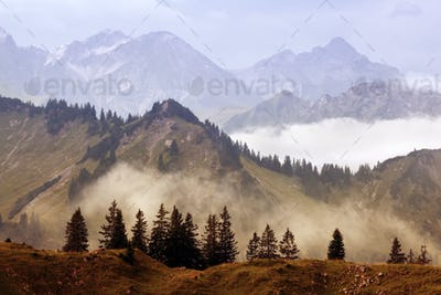 fog in mountains after rain