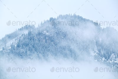 mountain top in snow and fog