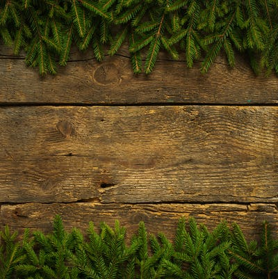 Christmas tree branches on wooden texture