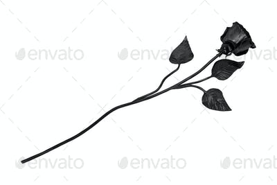 Forged rose on a white background