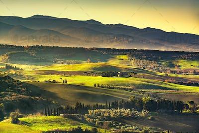 Maremma countryside, sunrise foggy landscape. Bibbona, Tuscany,