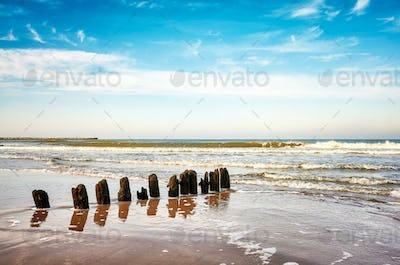 Old wooden groyne on a beach.