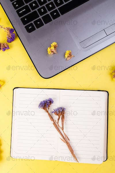 Notebook and flowers for female.