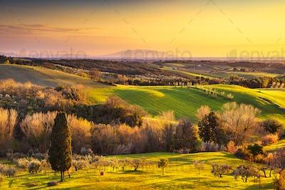 Maremma countryside, sunrise landscape. Elba island on horizon.