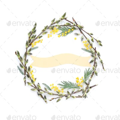 Pussy-willow branches with mimosa circle frame. Decorative wreat