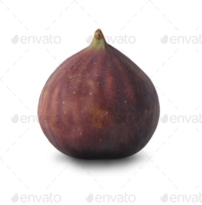 Fresh fig isolated at white