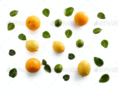 sunkist, lemon, and lime with leaves