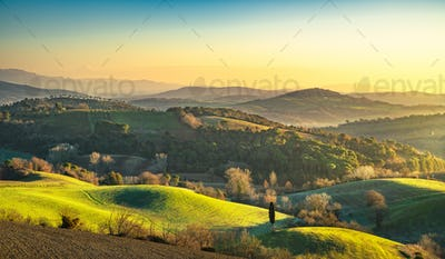 Maremma, rural sunrise landscape. Forest and green field. Tuscan