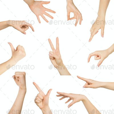 Set of various hand gestures isolated on white