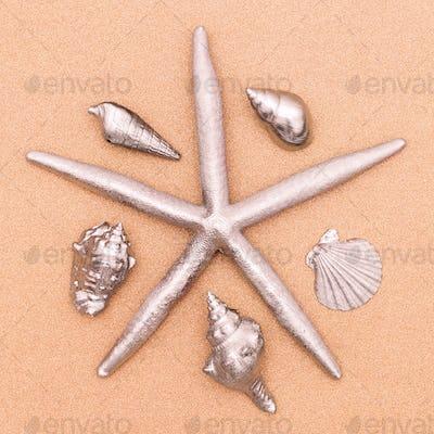 Starfish and seashells. Silver. Minimal art