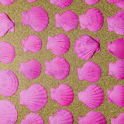 Set shells. Ocean vibes Minimal art