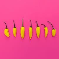 Yellow pepper. Minimal art design