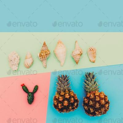 Tropics set. Pineapple shells cactus.Minimal art