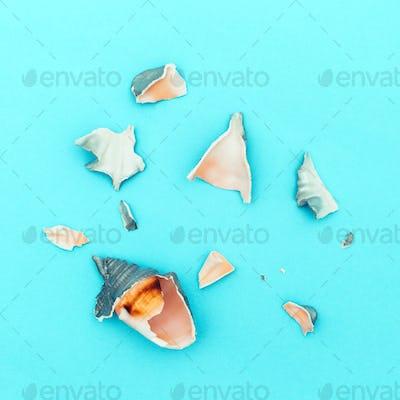 Broken seashells minimal art
