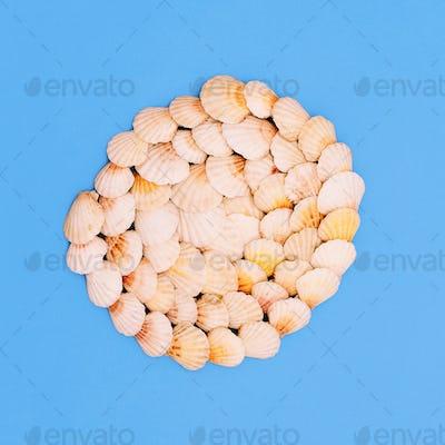 Shells background Marine sea mood. Minimal art