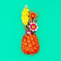 Tropical beach minimal style Pineapple art