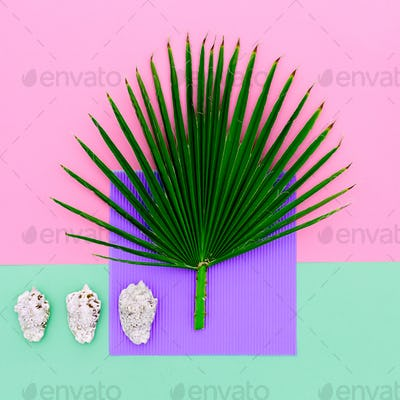 Shells and palm trees. Vacation concept. Minimal art