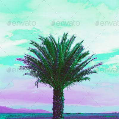 Palma Purple dreams Minimal landscape art