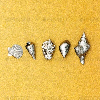 Summer tropical set.  Silver Shells. Minimal. Sea vibes