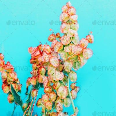 Tropical flowers. Minimal design art