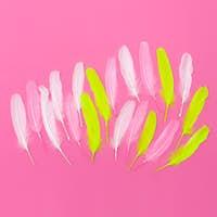 Candy minimal feathers art design fashion
