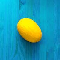 Melon. Fresh tropical ideas. Creative art
