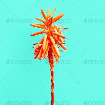 Tropical flower. Minimal fashion art gallery