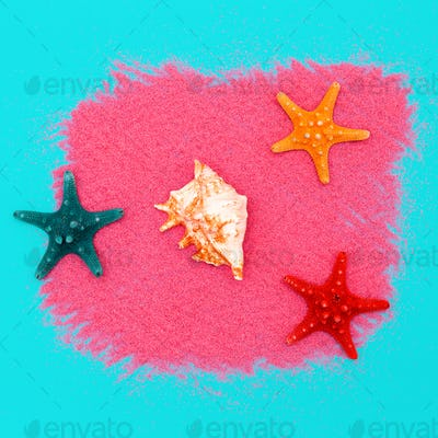 Shells and starfish. Ocean concept. Minimal art design Candy Col