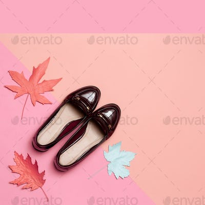 Fashionable vintage shoes for Lady Concept. Minimal design art