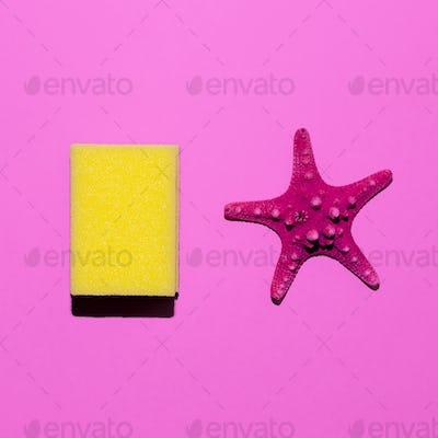 Starfish and sponge. Minimal design. Friendship style
