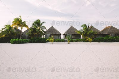 Exotic cabins on a sandy beach with palms and bushes
