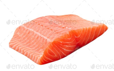 fresh uncooked red fish fillet